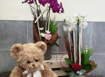 Orchidée et muguet
